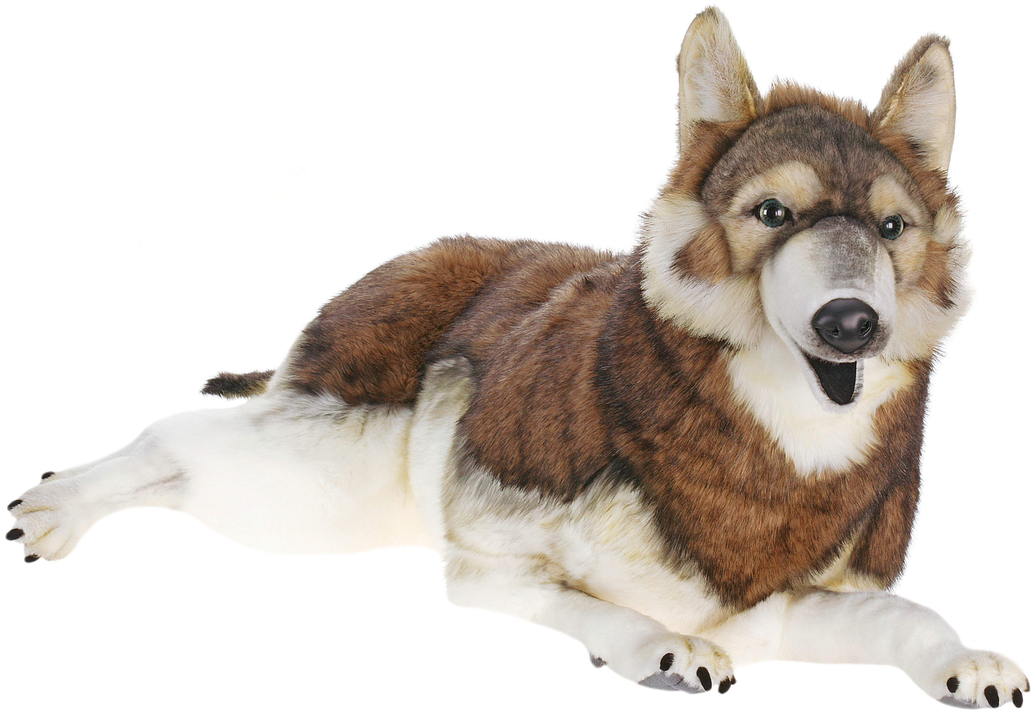 life size laying timber wolf stuffed animal. Black Bedroom Furniture Sets. Home Design Ideas