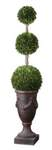Preserved Boxwood Botanical Artificial Plant A