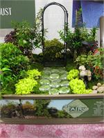 Miniature Fairy Garden Kit (Pre-Order) Miniature Fairy Garden Kit