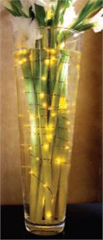 Gold Aqua Underwater Lights  Underwater Lights